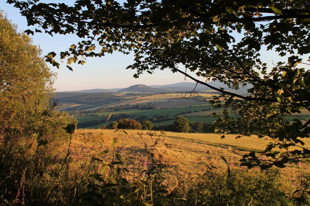 Impressionen Sommer Blick vom Pöhlberg