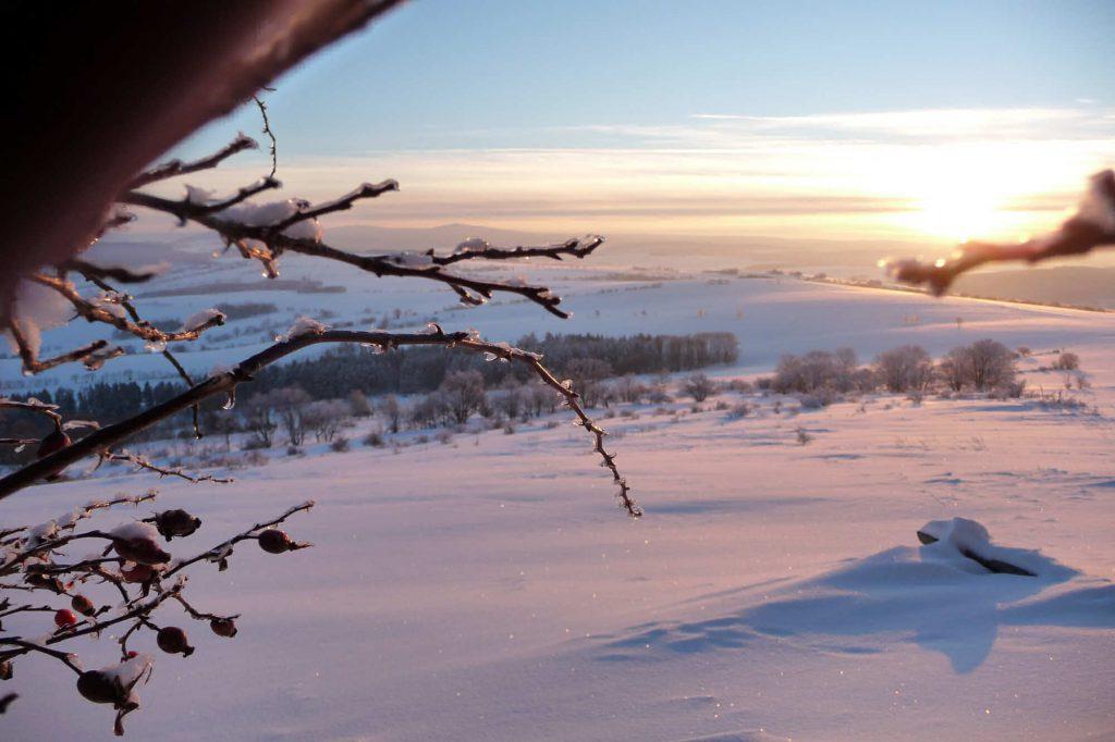 Impressionen Winter am Pöhlberg